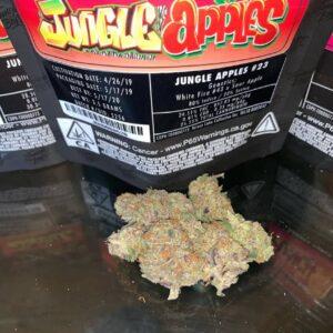 Jungle Apples jungle boy