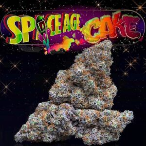 Space Age Cake jungle boy